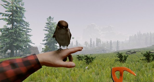The Forest - Beginner's Guide