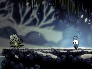 Hollow Knight - How to Defeat the Grim King of Nightmare