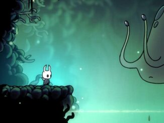 Hollow Knight - Radiance Tips